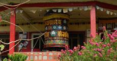 BUDDHIST TEACHINGS, MEDITATION, YOGA